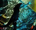 zonaruido-Anthrax-y-Testament-en-Chile-17938.jpg