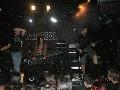 zonaruido-Saratoga-037-Leo-Skunk-DF-Dark-Moor-Censurados-3603.jpg
